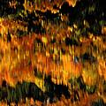 Calm Reflections by LeeAnn McLaneGoetz McLaneGoetzStudioLLCcom