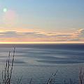 Calm Sea by Michele Cornelius