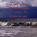 Calm The Storm  by Carolyn Marshall