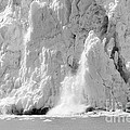 Calving Glacier In Black And White by Sophie Vigneault