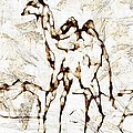 Camel by Marek Lutek