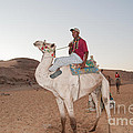 Camel Riders by Carol Ailles