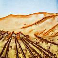 Camel Shadows by Tom Gowanlock