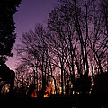 Camp Fire Sunset by Charleen Treasures