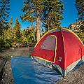 Camping In The Forest by Greg Nyquist