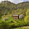 Canaan Valley West Virginia Cabin by Bill Swindaman