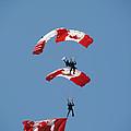 Canada Day Flight by Elaine Mikkelstrup