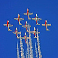 Canadian Air Force - Snowbirds by Pat Speirs