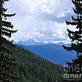 Canadian Rockies by Kim Frank