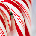 Candy Canes by Kim Fearheiley