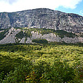 Cannon Cliff From Boise Rock New Hampshire by Nancy Griswold