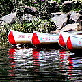 Canoe Rentals On The St Croix by Tam Graff