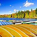 Canoes On Autumn Lake by Elena Elisseeva