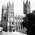 Canterbury Cathedral - England - C 1902 by International  Images