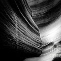 Canyon Curves In Black And White by Christine Till