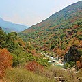 Canyon Stream by Heidi Smith