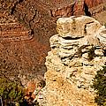 Canyon View V by Jon Berghoff