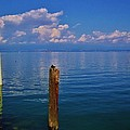 Cap Ferret  by Dany Lison