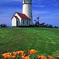 Cape Blanco Lighthouse Oregon by Dave Mills