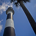 Cape Canaveral Lighthouse With Palm Tree by Roger Wedegis