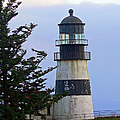 Cape D Lighthouse by Pamela Patch