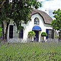 Cape Dutch Cottage by Paul Fell