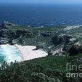 Cape Of Good Hope - Africa by Sandra Bronstein