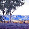 Caperty Valley Australia by Graham Gercken
