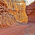 Capitol Gorge Trail At Capitol Reef by Jack Schultz