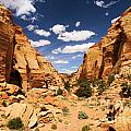 Capitol Reef Cohab Canyon by Adam Jewell