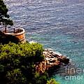 Capri  6 by Tanya  Searcy