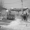 Car Vs Horse Cart by Gabriela Insuratelu