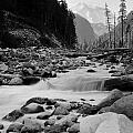Carbon River by Rakesh Malik