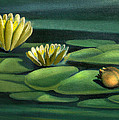Card Of Frog With Lily Pad Flowers by Nancy Griswold