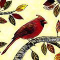 Cardinal by Amy Giacomelli