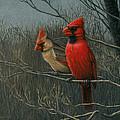 Cardinals by Lisa Bonforte