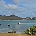 Caribbean Cove by Carol  Bradley