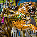 Carousal Camel And Tiger On A Merry-go-round by Randall Nyhof
