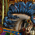 Carousel Beauty Star Of The Show by Bob Christopher