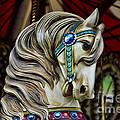 Carousel Horse 3 by Paul Ward