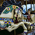 Carousel Horse 5 by Paul Ward