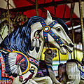 Carousel Horse 6 by Paul Ward
