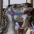 Carousel Horse by Darleen Stry
