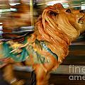 Carousel Lion by Ken Marsh