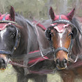 Carriage Horses Pleasure Pair by Connie Moses