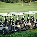Carts Ready To Hit The Greens by Noah Katz