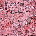 Carvings On Wall by Carlos Caetano