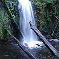 Rainforest Waterfall Cascades by Ian Mcadie