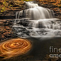 Cascading Swirls by Susan Candelario