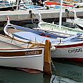 Cassis Harbor by Carla Parris